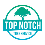 Top Notch Tree Service