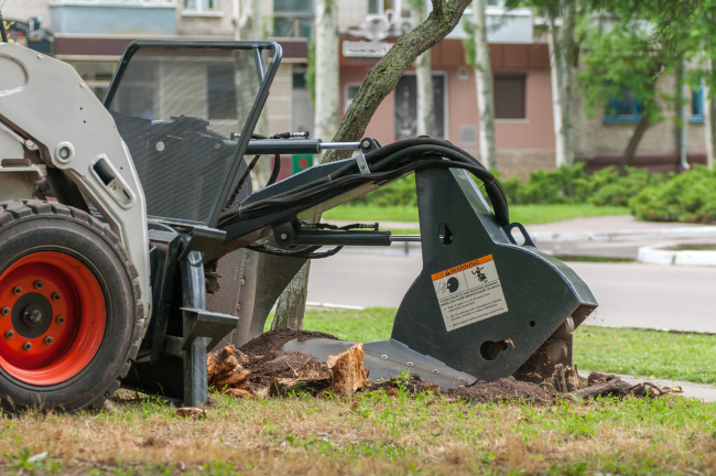 Common Questions About Stump Grinding