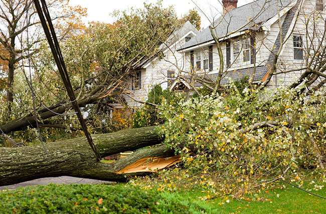 We're There to Help After the Storm with Storm Damage Cleanup